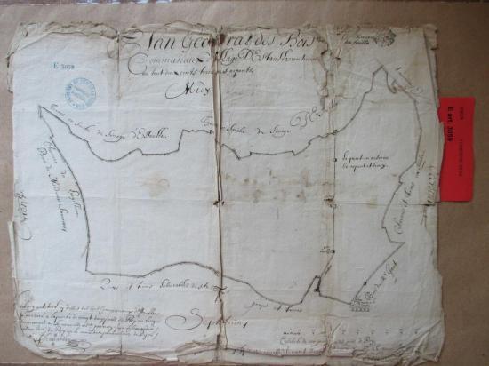Étaules Plan géométral des bois en 1678