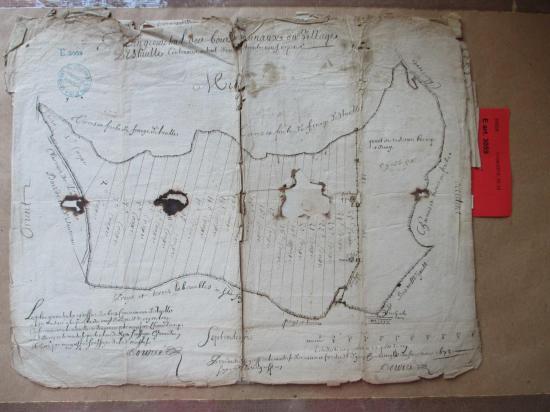 Étaules Plan géométral des bois avec les 25 coupes en 1678