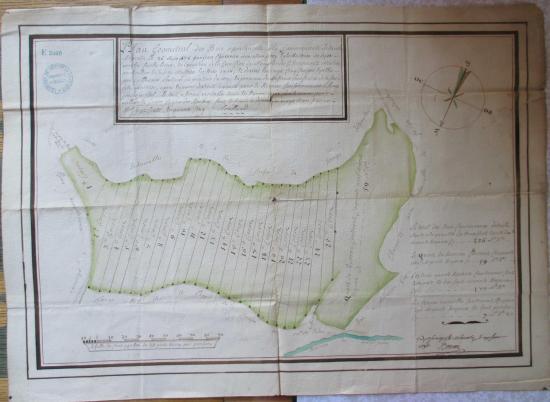 Étaules Plan géométral des bois avec les 25 coupes en 1756